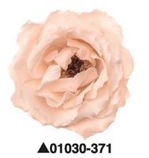Роза Majolica Size Assort, 6 бутонов