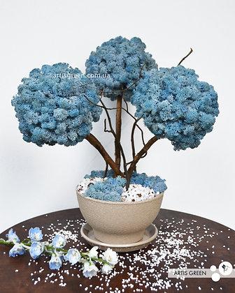 Трехствольное дерево из мха, топиарий голубой