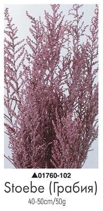 Грабия розовая
