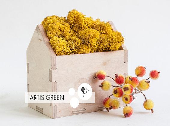 Moss Houses Yellow