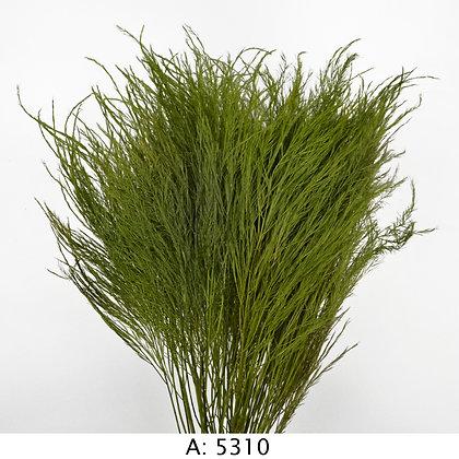 Стабилизированная трава Тики, А:5310