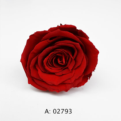 Роза красная Ø5-6 см большая Verona Red, 1 бутон А: 02793