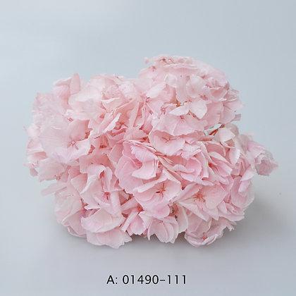 Гортензия светло-розовая со стеблем, А: 111