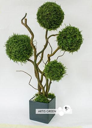 Дерево из лесного плоского мха, топиарий