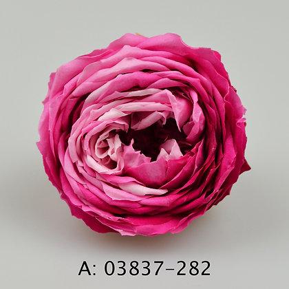 """Роза """"Temari Blossom"""", А: 282 , 6 бутонов"""