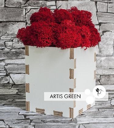 Red Moss&White Wood. Ламинированная фанера со мхом
