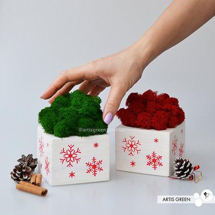 Горшочек с зелёным мхом. Новогодний корпоративный подарок
