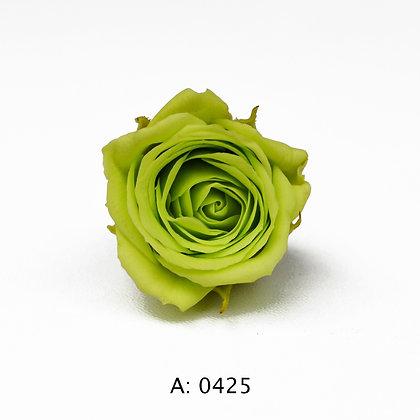 Роза зеленая Ø2-3 см мини Pistache, 1 бутон А: 0425