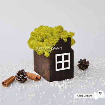 Корпоративный сувенир домик со мхом, салатовый