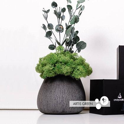 """Композиция """"Eucalyptus"""", green"""