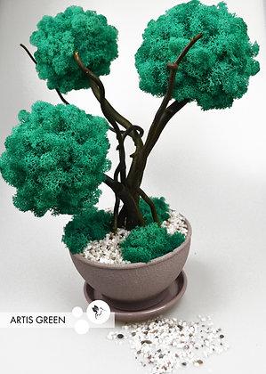 Трехствольное дерево из мха, топиарий Tiffani