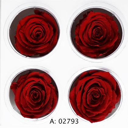 Роза красная Ø5-6 см большая Verona Red, 4 шт/уп. А: 02793