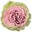 Thumbnail: Роза Brilliant, 8 бутонов