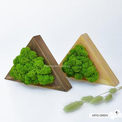Деревянный треугольник со скандинавским мхом