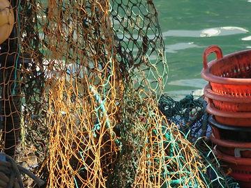 Fishing Conservation.jpg
