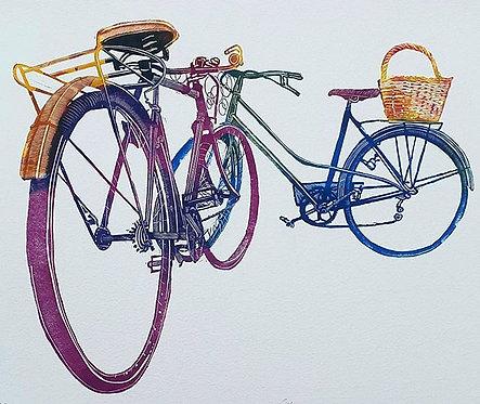 Ciclo Cicla