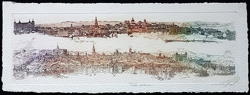 Panoramique Toledo Evolucion