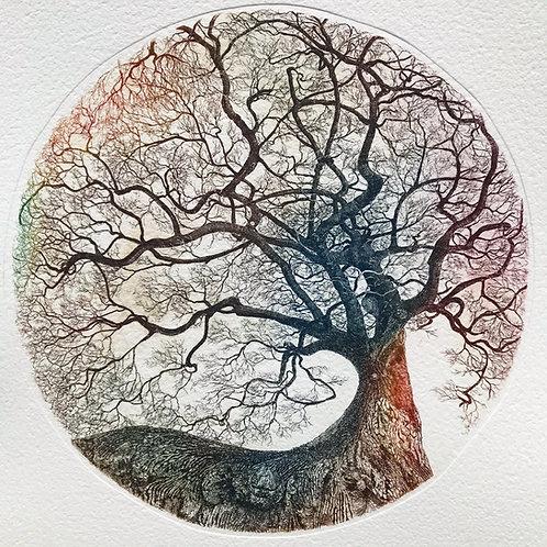 Chêne de Nerthe