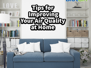 Tips for Improving Your Air Quality at Home