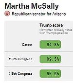 AZ-SEN Martha McSally (2020).jpg