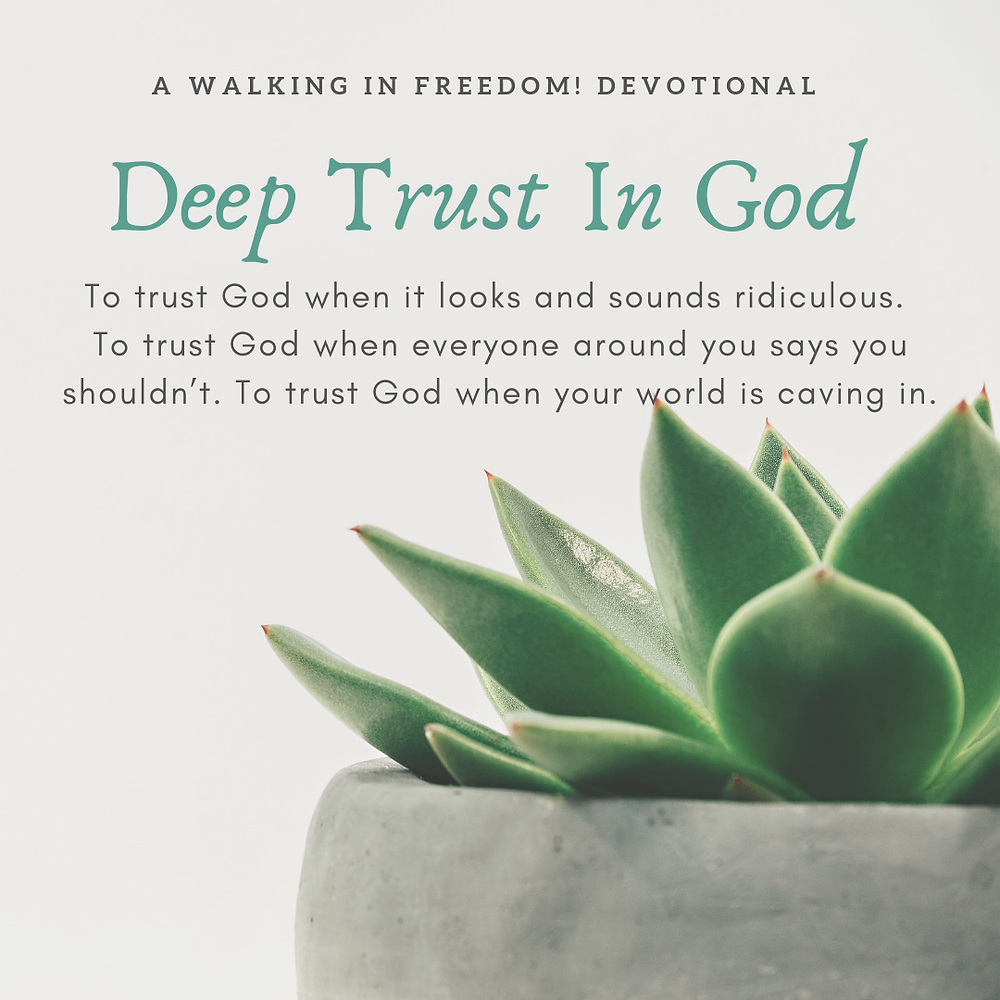 Deep Trust_WIFD (3)