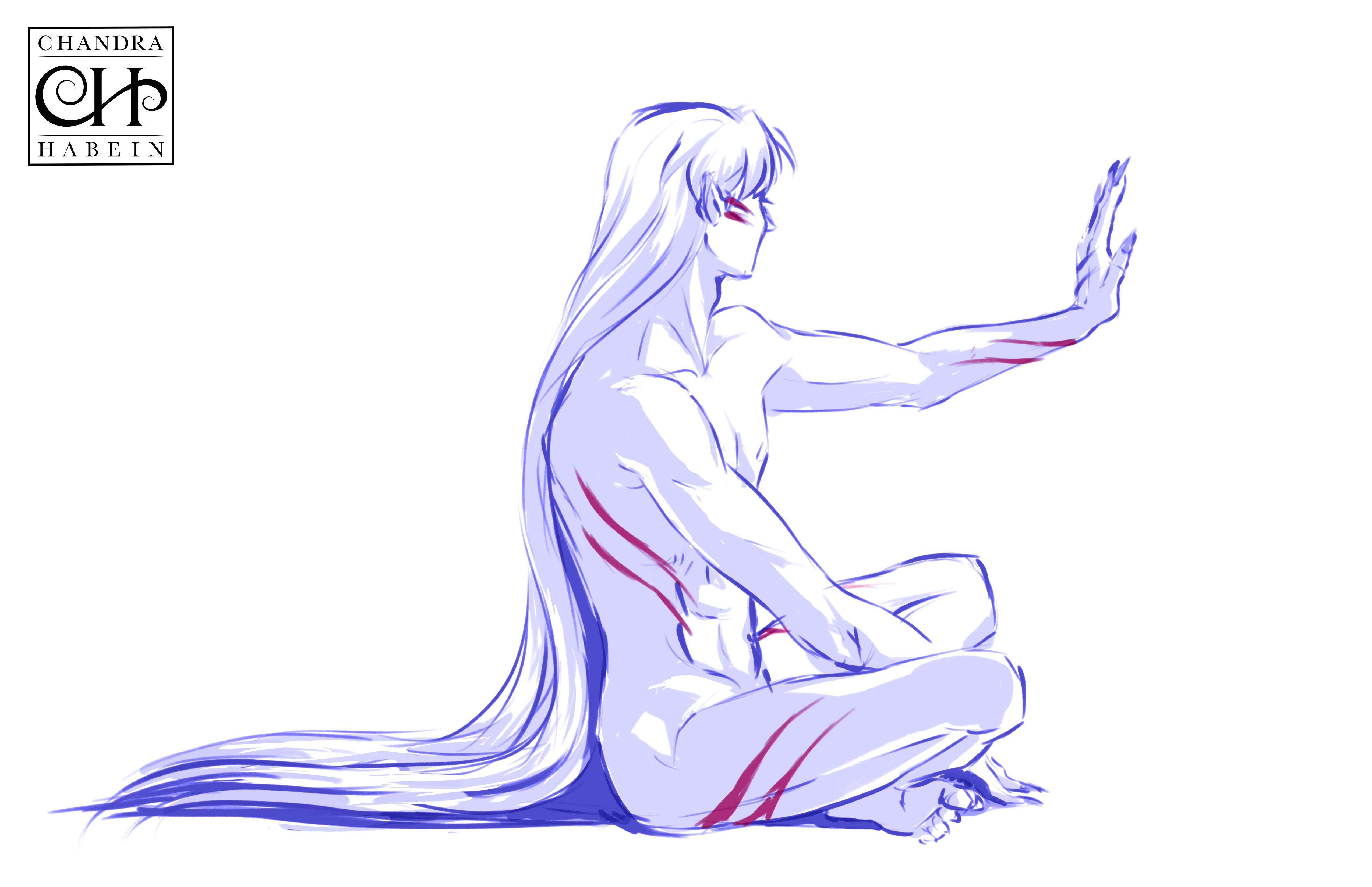 Sesshoumaru Study