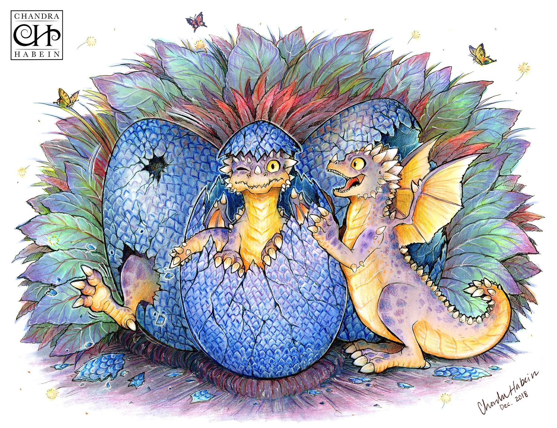 Baby Dragon Hatchlings