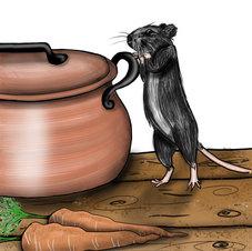 """""""Rat with pot"""""""