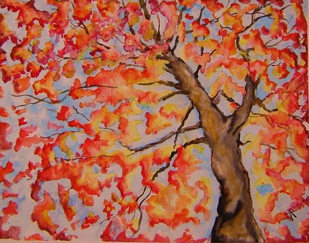 Autumn Sunburst.JPG