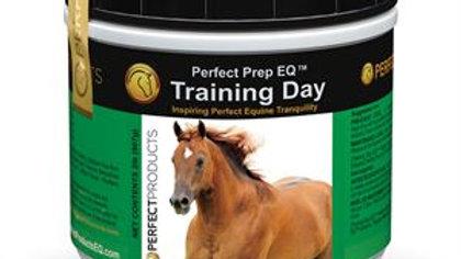 Perfect Prep Training Day