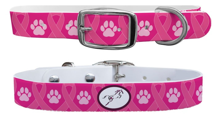 C4 - Hunt for the Cure Ribbons Dog Collar