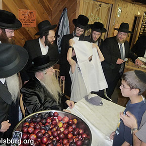 The Rebbe visited Camp Dora Golding