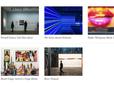 Fondation Cartier, Junya Ishigami