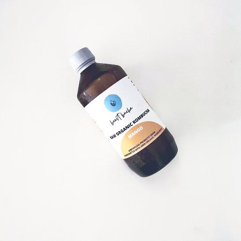 Organic Mango Kombucha
