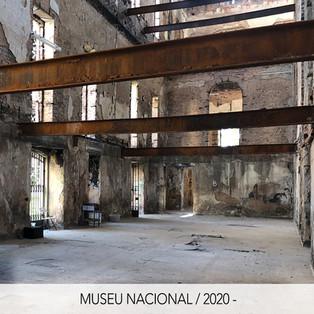 Ícone_Museu Nacional_op14.jpg
