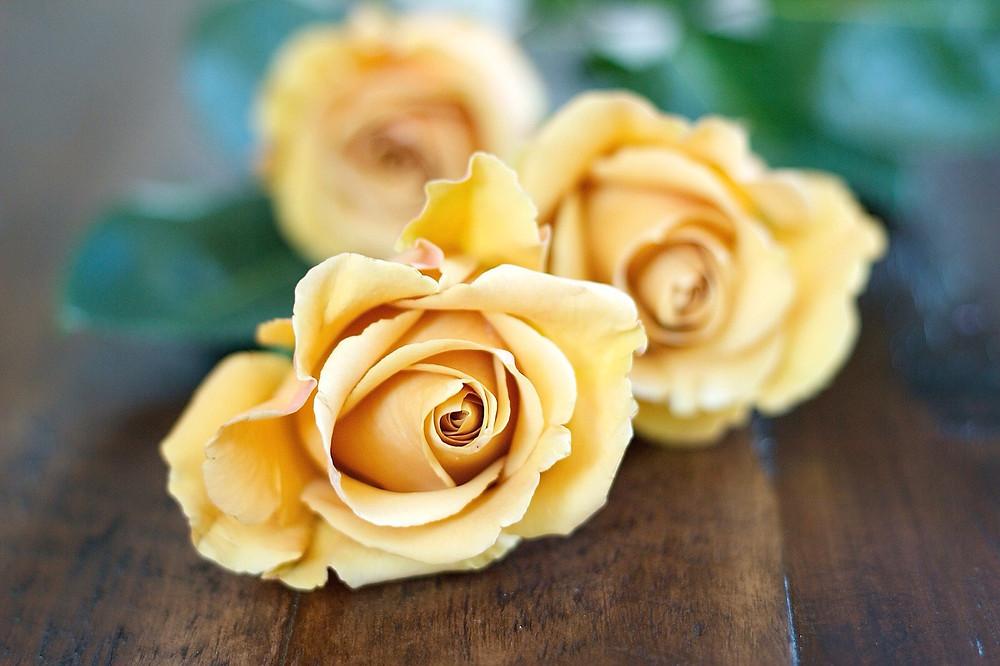 caramel roses