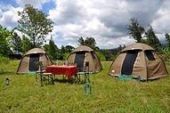camping safari.jpg