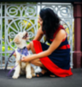 dog trainer melbourne puppy professor happy dog training fix behaviour train your best friend love in home training