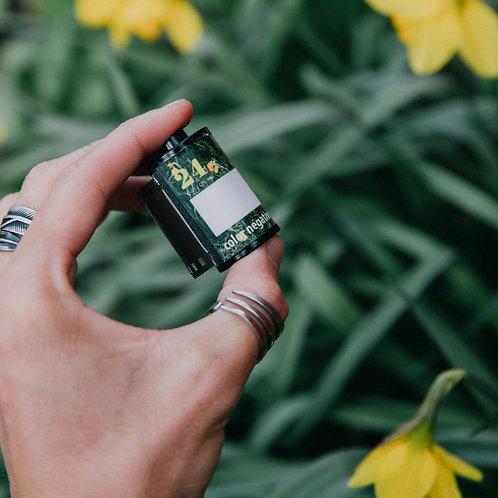 Film & Flowers