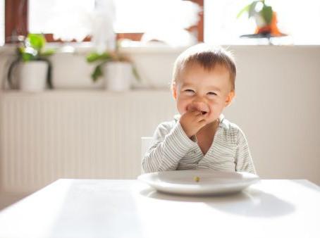 Como introduzir os alimentos sólidos? (Parte II)