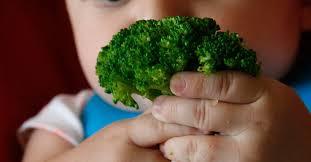 Uma nova forma de oferecer os alimentos: Baby led weaning