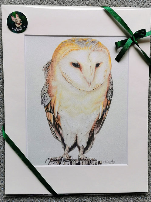 Ollie the owl - PRINT ONLY