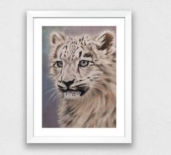 Manju the snow leopard cub