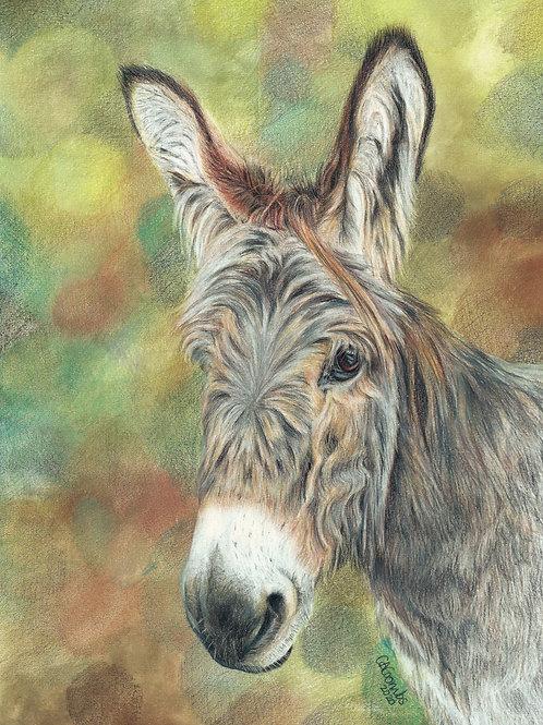 Emily the donkey -ORIGINAL DRAWING