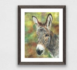Emily donkey 50% off sales to the Donkey sanctuary