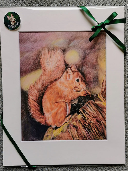 Red Squirrel - PRINT ONLY
