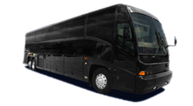 53 Passenger Luxury Bus
