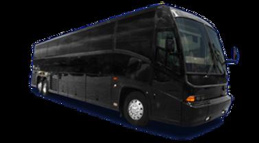 53 Passenger Luxury Bus