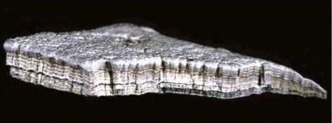 Metallo di un presunto UFO, in possesso della To The Star Academy, composto da magnesio e bismuto