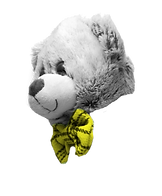 ראש דובי.png